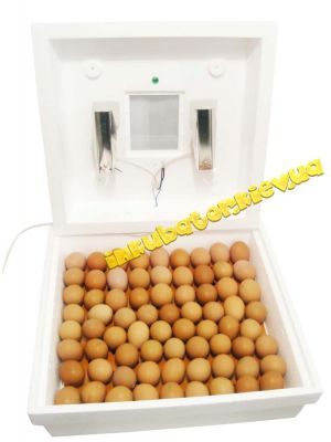 Инкубатор «Рябушка-2» ИБ-70-Э на 70 яиц с ручным переворотом и с цифровым терморегулятором