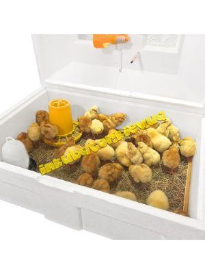 """Брудер (ясли) """"Теплуша"""" для цыплят, бройлеров, перепелов (на 100 цыплят за сутки)"""