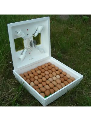 """Інкубатор """"Квочка МИ-30-1С""""  на 70 яєць з ручним переворотом"""