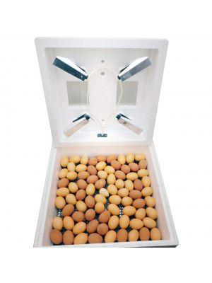Інкубатор ручний МИ-30 на 80 яєць (електронний терморегулятор)